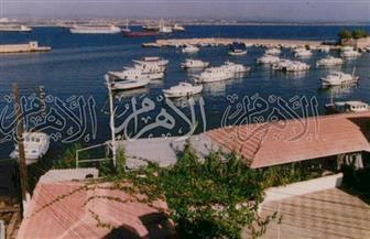 «أرواد».. جزيرة سورية نجت من الحرب وطالتها تداعياتها الاقتصادية| صور
