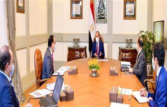 الرئيس السيسي يوجه باستمرار متابعة التداعيات الاقتصادية لكورونا والسداد النقدي لمتأخرات المصدرين