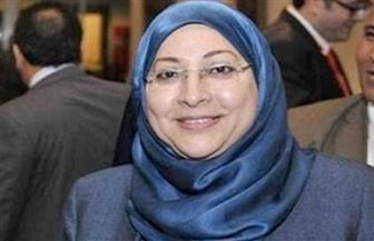 نائبة محافظ القاهرة تتابع إزالة العقارات المتعارضة مع توسعة الدائري في البساتين وتعويض 1380 أسرة