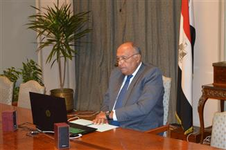 شكري يؤكد دعم مصر لجهود تعزيز التعاون الجنوب جنوب
