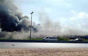 حريق في شركة تصدير حاصلات زراعية بالبحيرة