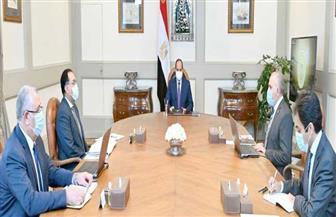الرئيس السيسي يوجه بالتوسع في تطبيق ونشر نظام الري الحديث للأراضي الزراعية