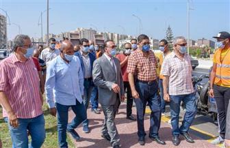 محافظ الإسكندرية يترأس حملة لإزالة الإشغالات من محيط محور المحمودية | صور