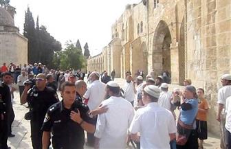 مرصد الأزهر: أكثر من 1800 صهيوني اقتحموا ساحات المسجد الأقصى في نوفمبر