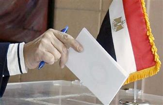 ننشر القائمة المبدئية لأسماء المرشحين على النظام الفردي في انتخابات مجلس النواب