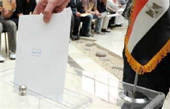 """ننشر أسماء مرشحي قائمة """"نداء مصر"""" بقطاع الصعيد"""