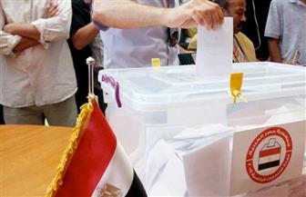المصريون في السنغال يواصلون التصويت بالبريد بانتخابات النواب لليوم الثاني