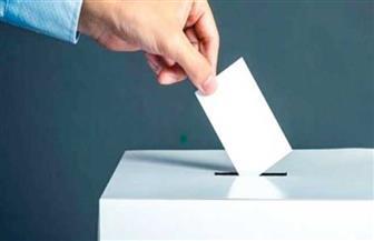 المصريون فى ألمانيا وبلجيكا وفرنسا يواصلون التصويت بالبريد بانتخابات النواب لليوم الثاني