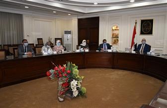 """وزير الإسكان يتابع توصيل المرافق وتسليم قطع الأراضى بمشروع """"بيت الوطن"""" للمصريين بالخارج"""