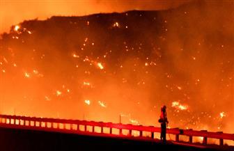 حرائق الغابات تجبر الآلاف على الفرار في كاليفورنيا