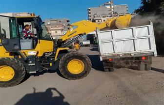 محافظ كفرالشيخ: رفع 2198 طن مخلفات وحملات نظافة مكثفة بالمراكز والمدن|صور