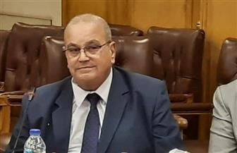فتحي مرسي نائبا ثانيا لرئيس اتحاد الغرف التجارية بالتزكية | صور