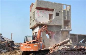 إزالة 185 منزلا ضمن تعديات على بحيرة المنزلة بمنطقة عبده الصالحي | صور