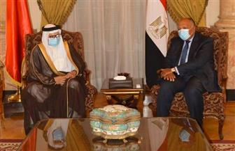مباحثات ثنائية مصرية بحرينية على مستوى وزراء الخارجية