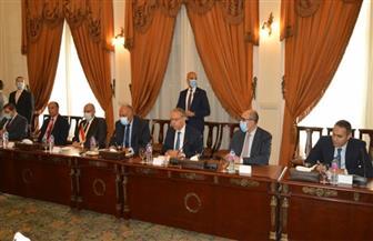 تفاصيل البيان المُشترك عن جلسة المباحثات الرسمية بين وزيري خارجية مصر والبحرين