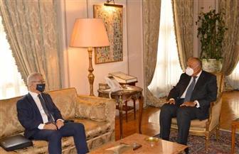 وزير الخارجية يبحث مع نظيره المالطي تطورات شرق المتوسط ومستجدات الأزمة الليبية | صور