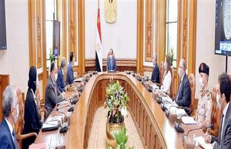 الرئيس السيسي يوجه بتعظيم المميزات التفضيلية للقطاع الزراعي في مصر