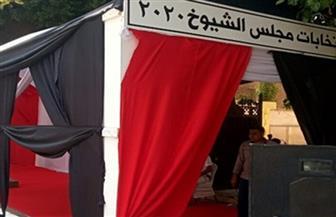 """انطلاق عملية التصويت بجولة الإعادة بانتخابات """"الشيوخ"""" بـ6 أكتوبر"""