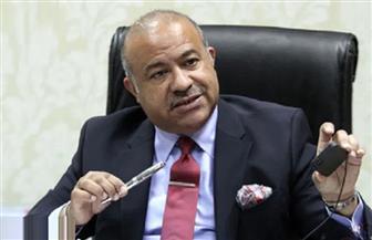 مساعد وزير التموين: مصر من أكثر الدول قدرة على تكوين احتياطات أمان من السلع