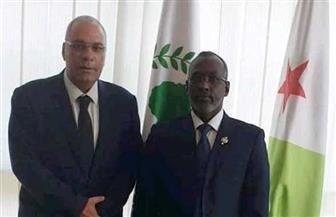 السفير المصري في جيبوتي يلتقي رئيس البرلمان