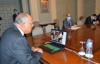 وزير الخارجية يشارك فى اجتماع مجلس جامعة الدول العربية| صور