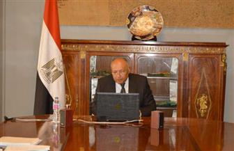 نص كلمة وزير الخارجية في الدورة الـ154 لمجلس جامعة الدول العربية