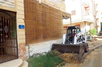 محافظ كفرالشيخ: رفع 2094 طن مخلفات.. وحملات نظافة مكثفة بالمراكز والمدن | صور