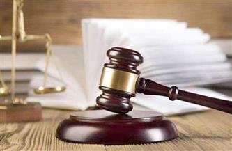 غدًا.. استكمال محاكمة 11 متهمًا في قضية «التخابر مع داعش»