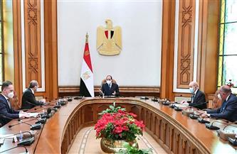 الرئيس السيسي: تسوية القضية الفلسطينية سيغير من واقع المنطقة إلى الأفضل | صور