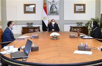 الرئيس السيسي يوجه بتنفيذ جميع إنشاءات المشروعات المكملة للروبيكي وفق أرقى المعايير الهندسية
