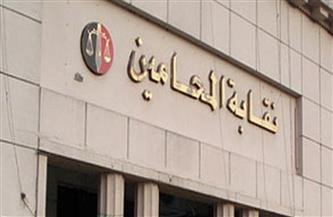 حازم طه نقيبا لمحاميي الفيوم بـ973 صوتا ومحمد حكيم يحصد مقعد الشباب بـ633 صوتا