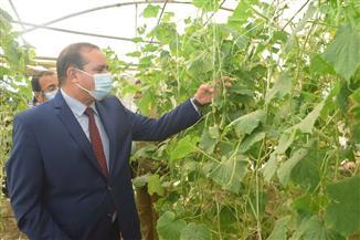 افتتاح وحدة إنتاج شتلات الخضر المطعومة بمزرعة جامعة سوهاج| صور