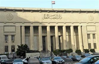 """تأجيل محاكمة سناء سيف في قضية """"نشر أخبار كاذبة"""""""