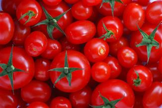 التموين: الطماطم بـ 2.5 والسمك بـ 22 جنيها.. وحملات رقابية على الأسواق