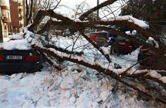 خسائر العاصفة الثلجية في مدريد لا تقل عن 1.7 مليار دولار