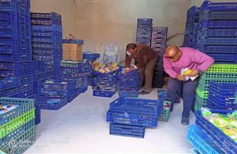 ضبط 220 كيلو جرام أغذية فاسدة خلال حملة بطور سيناء| صور