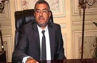 """""""إسكان النواب"""" توافق على منحة الصرف الصحي المتكامل بالمناطق الريفية بصعيد مصر بمليون يورو"""