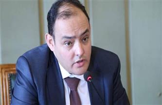 رئيس اقتصادية النواب يطالب بتعظيم الإيرادات وتحقيق المستهدف من المتحصلات الضريبية