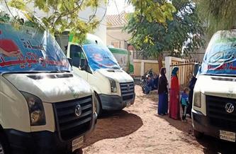 الكشف على 1514 مواطنا في قافلة طبية بقرية أولاد الشيخ بالمنيا