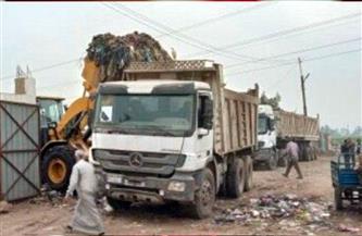 رفع 540 طن قمامة ومخلفات في ههيا بالشرقية| صور