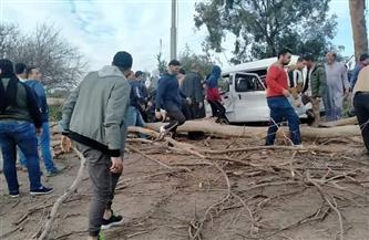 مصرع سيدة وإصابة اثنين آخرين وتهشم سيارة سقطت عليهم شجرة بالغربية | صور
