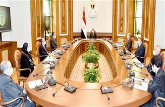 الرئيس السيسي يتابع المشروع القومي لتصنيع السيارات الكهربائية في مصر