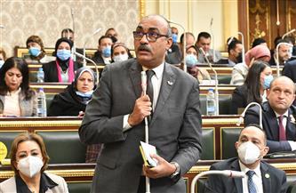 إعلام النواب تناقش طلبي إحاطة حول إزالة قصر برسوم باشا وتضرر 267 متعاقدا بالآثار