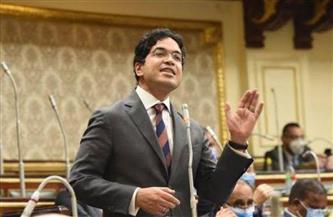 ضياء داود: نأمل ألا تتحول توصيات اللجان النوعية لمجلس النواب إلى حبر على ورق