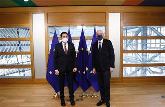الأمين العام لـ «العليا للأخوة الإنسانية» يشيد بدور المجلس الأوروبي في خدمة القضايا الدولية والإنسانية