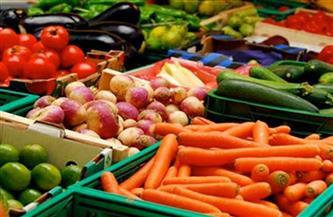 """""""حكومة مدبولي"""" تفتح 40 سوقًا أمام الصادرات الزراعية وتحتل الصدارة بالعالم بـ5 ملايين طن في 2020"""