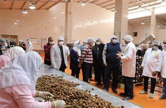 مصر تقترح إنشاء مناطق لوجيستية مع السعودية لتخزين وتعبئة وتصنيع وتصدير التمور