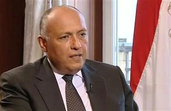 سامح شكري: الرئيس السيسي حرص على توطيد العلاقات مع الأشقاء الأفارقة منذ عام 2014