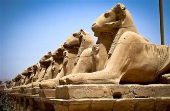 افتتاح المشروع القومي لإنقاذ 29 تمثالًا للكباش في الأقصر