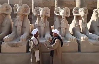 انطلاق احتفالية افتتاح المشروع القومي لإنقاذ 29 تمثالًا للكباش في الأقصر |فيديو وصور